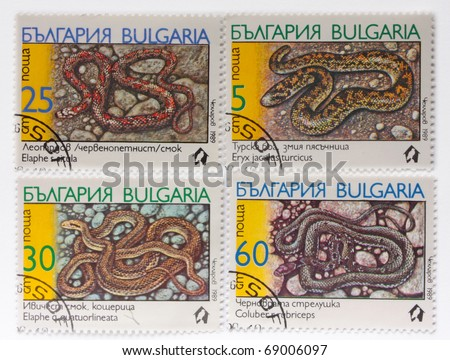 "BULGARIA - CIRCA 1989: A Stamp printed in BULGARIA shows the image of a Cat Snake with the description ""Telescopus fallax"" from the series ""Snakes"", circa 1989"