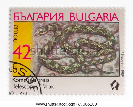 """BULGARIA - CIRCA 1989: A Stamp printed in BULGARIA shows the image of a Cat Snake with the description """"Telescopus fallax"""" from the series """"Snakes"""", circa 1989"""