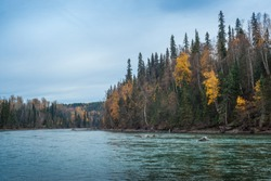 Bulkley River in autumn colors - Smithers BC Canada