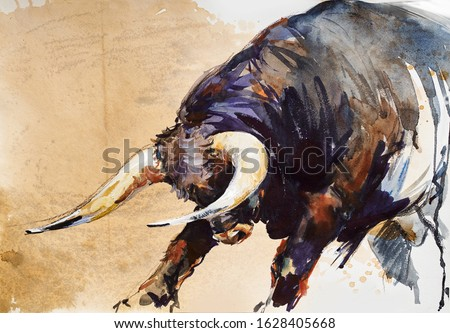 Bull. animal illustration. Watercolor hand drawn series of cattle. Toro Bravo breeds. Foto stock ©