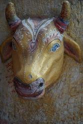 Bull Head, Temle Symbol Figure, Chinese Lunar Calendar. Gold Color Background.