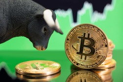 Bull market in Bitcoin crypto currency. Bullish price trend and rise in value