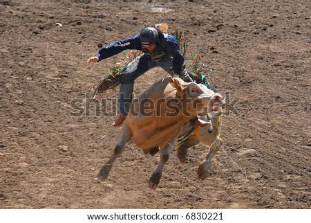 stock photo : bull rider高清图片