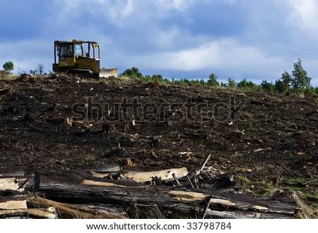 Bulldozer on Logging Field