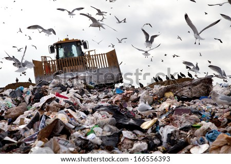 Bulldozer working on landfill with birds in the sky
