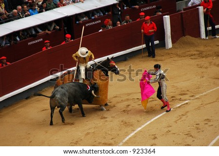 Bullfight, Entertainment or Violence?