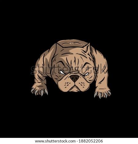 bully americanbully logo dog pitbull Foto stock ©