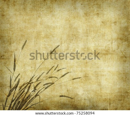 bulrushes on antique paper texture