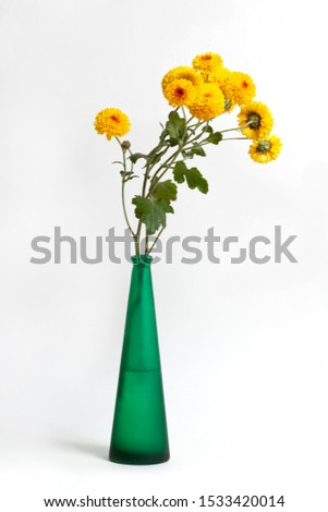 Bunch, bouquet of yellow chrysanthemum in a vase isolated on a white Foto stock ©