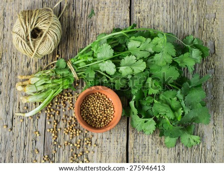 Bunch fresh cilantro, and coriander seeds on a wooden table