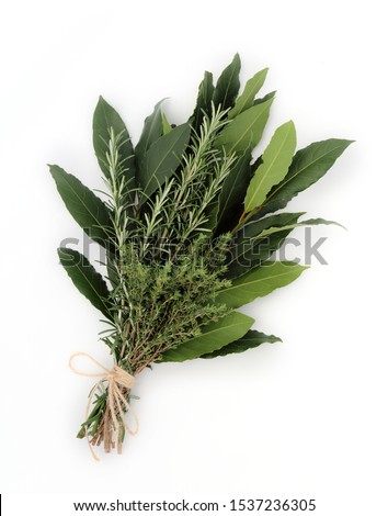 Bunch of aromatic herbs isolated on white.  Fresh bay leaves,rosemary and thym  tied together with string.