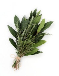 Bunch of aromatic herbs named bouquet garni isolated on white.  Fresh bay leaves,rosemary and thym  tied together with string.