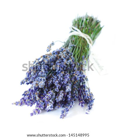 Bunch of aromatic lavender flowers on a white.