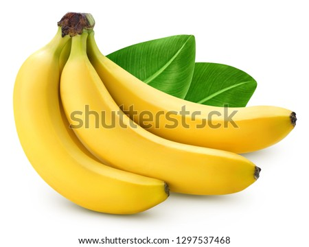 Bunch of bananas isolated on white background. Bananas with leaves Clipping Path. Professional food photography