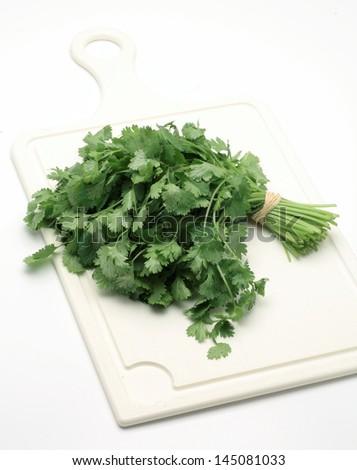 Bunch of  cilantro/ coriander on white background