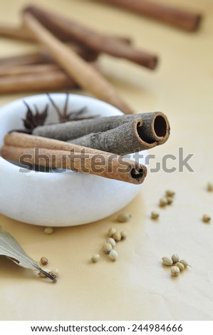 Bunch of Cinnamon sticks coriander seeds and star anise in a marble mortar.