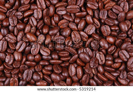 bunch of coffee beans close up / macro