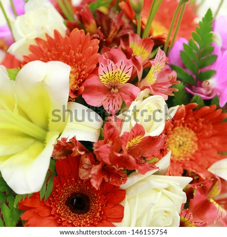 Bunch of colorful flowers  #146155754
