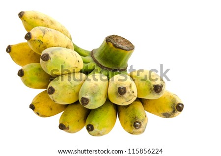 Bunch of cultivated banana isolated on white background, clipping path included