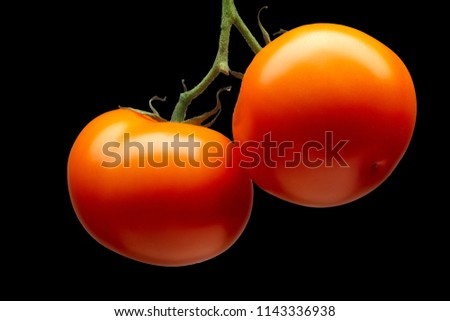 Bunch of delicious red tomatoes isolated on black background with clipping path