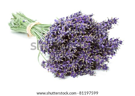Bunch of dried Lavender flowers (Lavandula angustifolia), isolated - stock photo