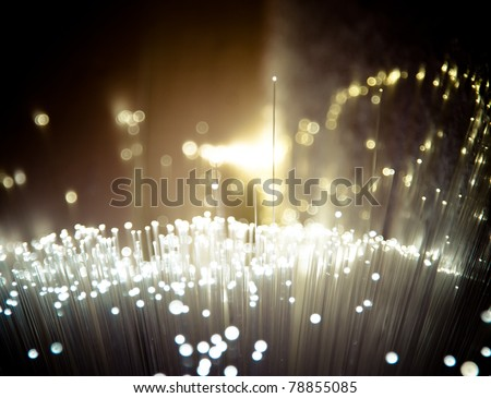 Bunch of fiber optics
