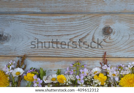 Bunch of field flowers,daisies, buttercups, Pentecostal flowers, dandelions  in a border row on a old blue gray spring summer wooden background with empty copy space