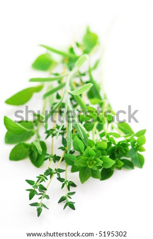 Bunch of fresh assorted herbs on white background (basil, thyme, oregano, rosemary)