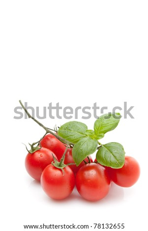 Bunch of fresh cherry tomato with basil, on white background