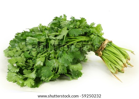 http://image.shutterstock.com/display_pic_with_logo/596908/596908,1282088998,3/stock-photo-bunch-of-fresh-cilantro-isolated-on-white-59250232.jpg