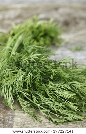 bunch of fresh dill herb on wood
