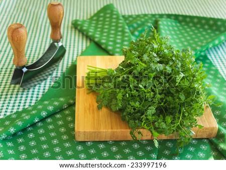 Bunch of fresh green coriander (cilantro) on wooden chopping board, closeup