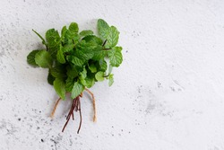 bunch of fresh green mint laves on white marble background. Top view with copy space.