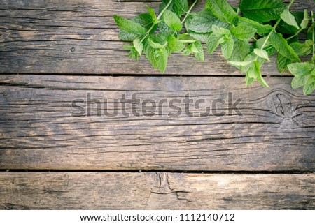 Bunch of fresh green mint on rustic wooden table background.