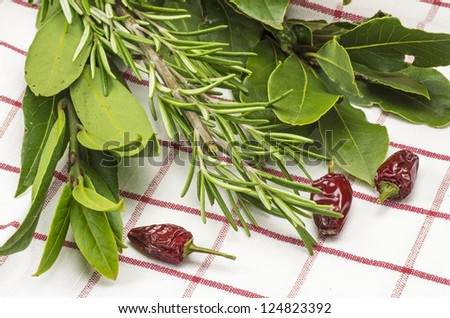 Bunch of fresh herbs