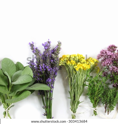 Bunch of fresh herbs on white background