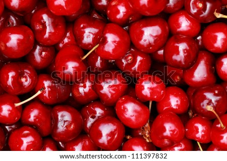 bunch of fresh, juicy, ripe cherries
