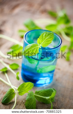 Bunch of fresh mint in blue glass