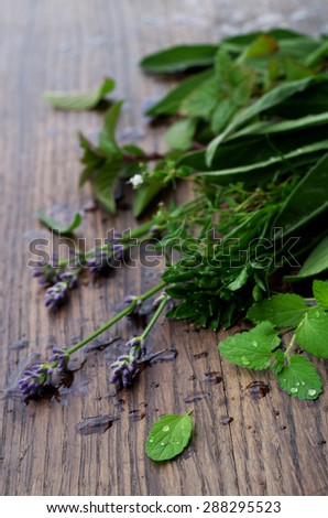 Bunch of fresh organic herbs on rustic wooden background