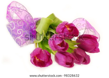 bunch of fresh purple tulips with dew drops lying on  white background