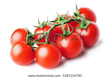 Bunch of fresh, red tomatoes with green stems isolated on white background. Clipping path.