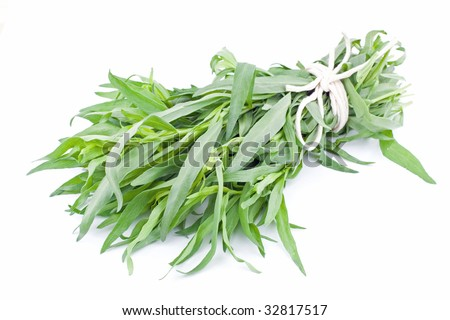 Bunch of fresh tarragon