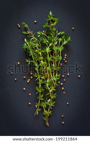Bunch of fresh thyme with coriander seeds on a black background.