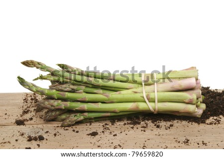 Bunch of freshly picked asparagus spears on a wooden board with residual soil