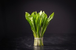 Bunch of freshly picked green wild garlic leaves on black background, close up. Healthy leaves of green wild leek or ramson