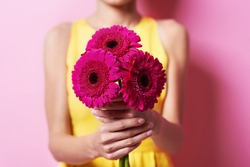 Bunch of gorgeous gerbera daisy