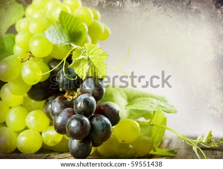 Bunch of grape.Vintage Styled.With Copy-space
