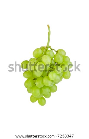 Bunch of grapes against white background