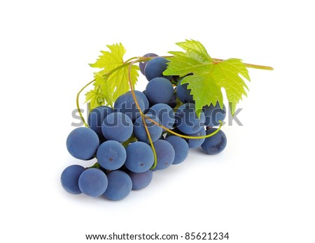 Bunch of grapes and vine leaves on a white background