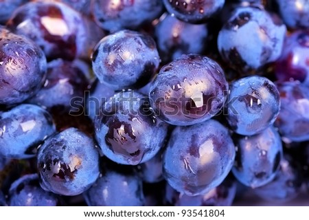 Bunch of grapes as background